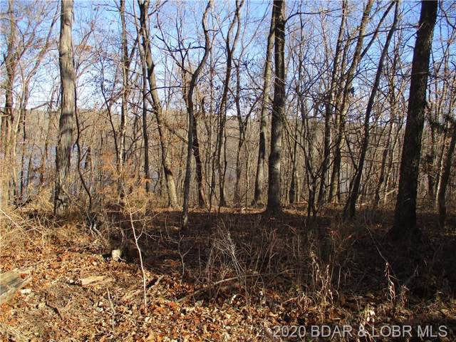 TBD Down Wind Three Two Lot 79, Stover, MO 65078 (MLS #3522115) :: Coldwell Banker Lake Country