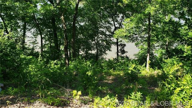 TBD Eagle Bay Drive, Gravois Mills, MO 65037 (MLS #3524722) :: Coldwell Banker Lake Country