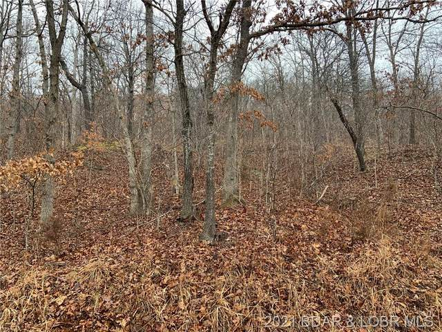 Alta Drive, Roach, MO 65787 (MLS #3531501) :: Coldwell Banker Lake Country