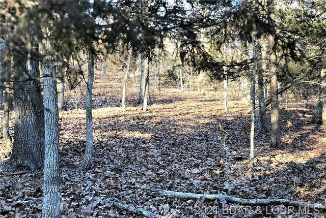 TBD Lost Buck Drive, Roach, MO 65787 (MLS #3531523) :: Coldwell Banker Lake Country