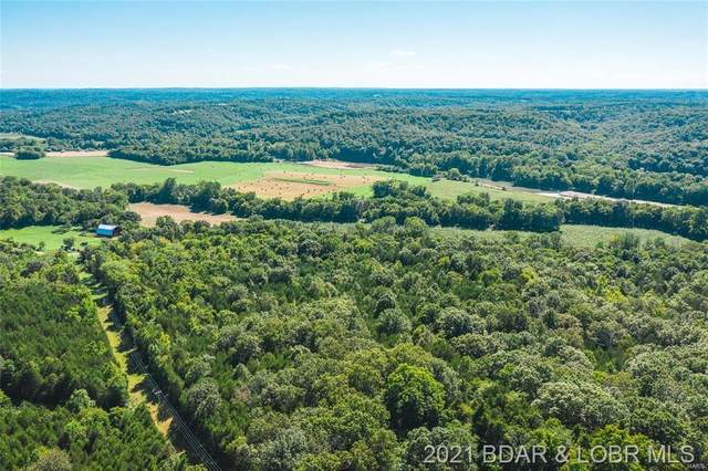 Lantern Lane, Dixon, MO 65459 (MLS #3531764) :: Coldwell Banker Lake Country