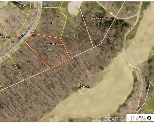 Lot 316 Cherry Hill Drive, Lake Ozark, MO 65049 (#3531901) :: Matt Smith Real Estate Group