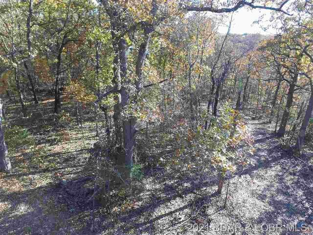90 Acres Elk Ridge Drive, Warsaw, MO 65355 (MLS #3531952) :: Coldwell Banker Lake Country