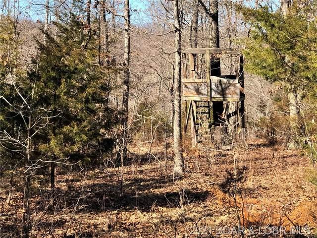 # 1 Calebs Trail, Roach, MO 65787 (MLS #3532499) :: Coldwell Banker Lake Country