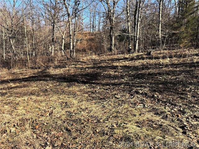 # 8 Forest Trails Road, Roach, MO 65787 (MLS #3532501) :: Coldwell Banker Lake Country