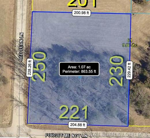 Lot 59 Tonka Villa Estates, Camdenton, MO 65020 (MLS #3537875) :: Columbia Real Estate
