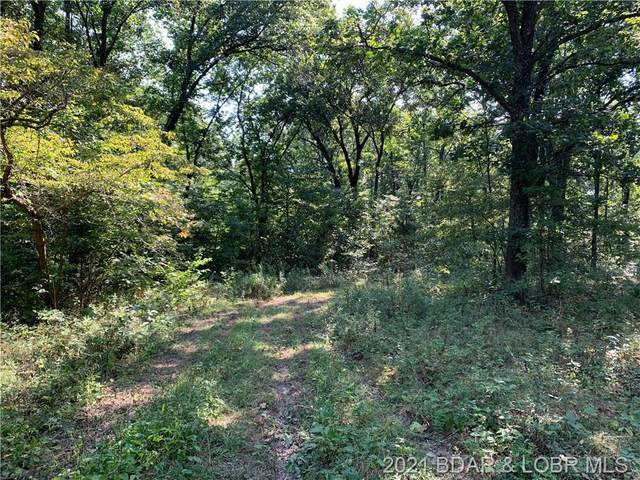 TBD Alyssa Road, Villages, MO 65084 (MLS #3539483) :: Coldwell Banker Lake Country