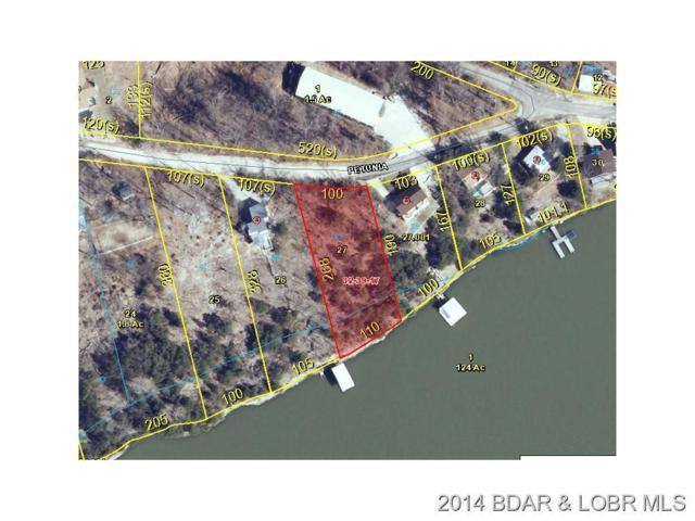 Petunia, Camdenton, MO 65020 (MLS #3127129) :: Coldwell Banker Lake Country