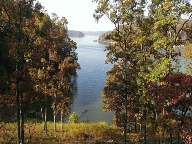 Lot 36 Eagle View Lane, Gravois Mills, MO 65037 (MLS #3503820) :: Coldwell Banker Lake Country