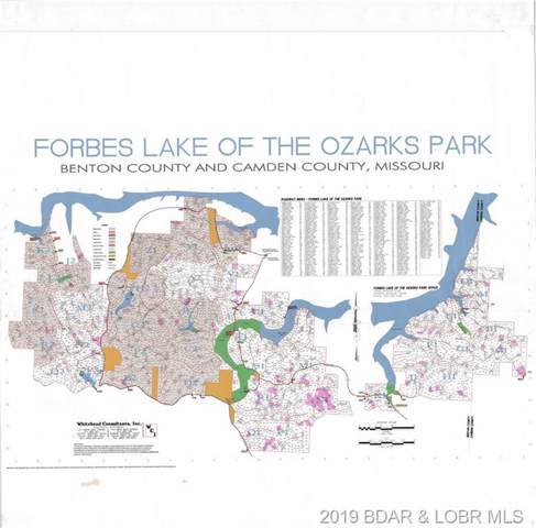 Forbes Lake Of The Ozarks Street, Edwards, MO 65325 (MLS #3516879) :: Coldwell Banker Lake Country
