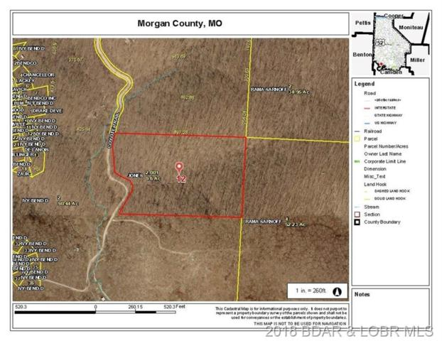 Coyote Trail, Stover, MO 65078 (MLS #3500186) :: Coldwell Banker Lake Country