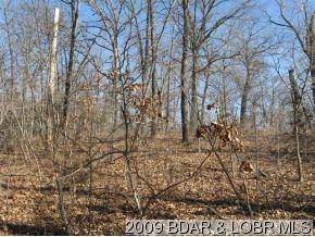 TBD IRR Earl Road, Rocky Mount, MO 65072 (MLS #3126802) :: Coldwell Banker Lake Country