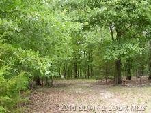 Highlands Drive, Camdenton, MO 65020 (MLS #3505451) :: Coldwell Banker Lake Country