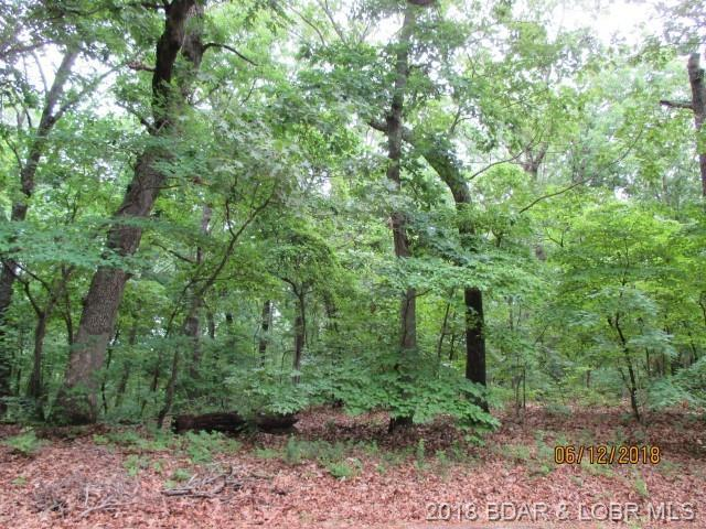 (Porta Cima) Park Place Street Lot 1035 Herita, Sunrise Beach, MO 65079 (MLS #3505474) :: Coldwell Banker Lake Country