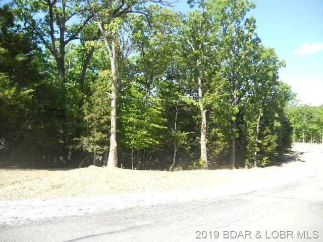Lot 956 Bumps Bend Road - Photo 1