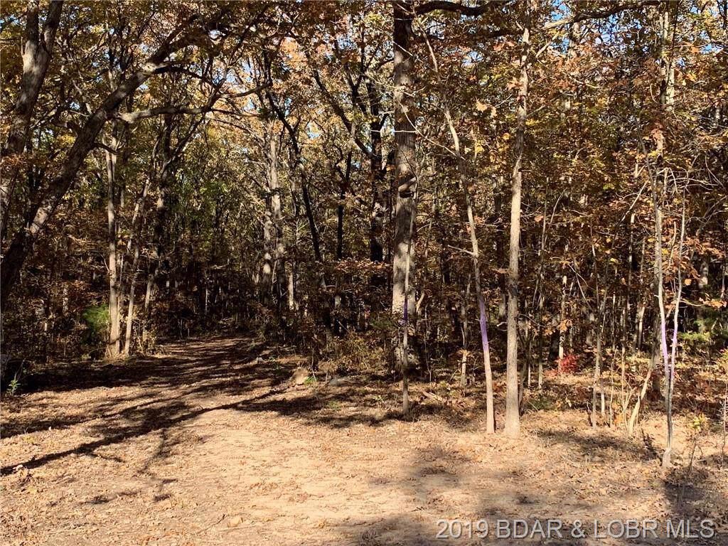 70 Acres Elk Ridge Drive - Photo 1