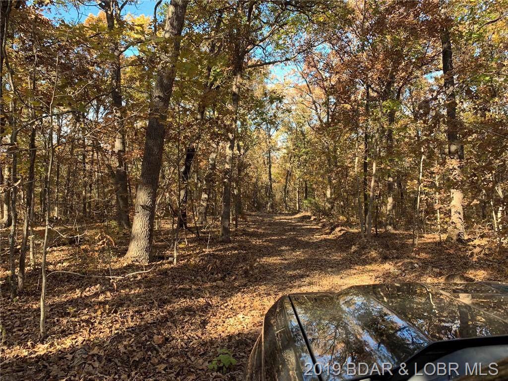90 Acres Elk Ridge Drive - Photo 1