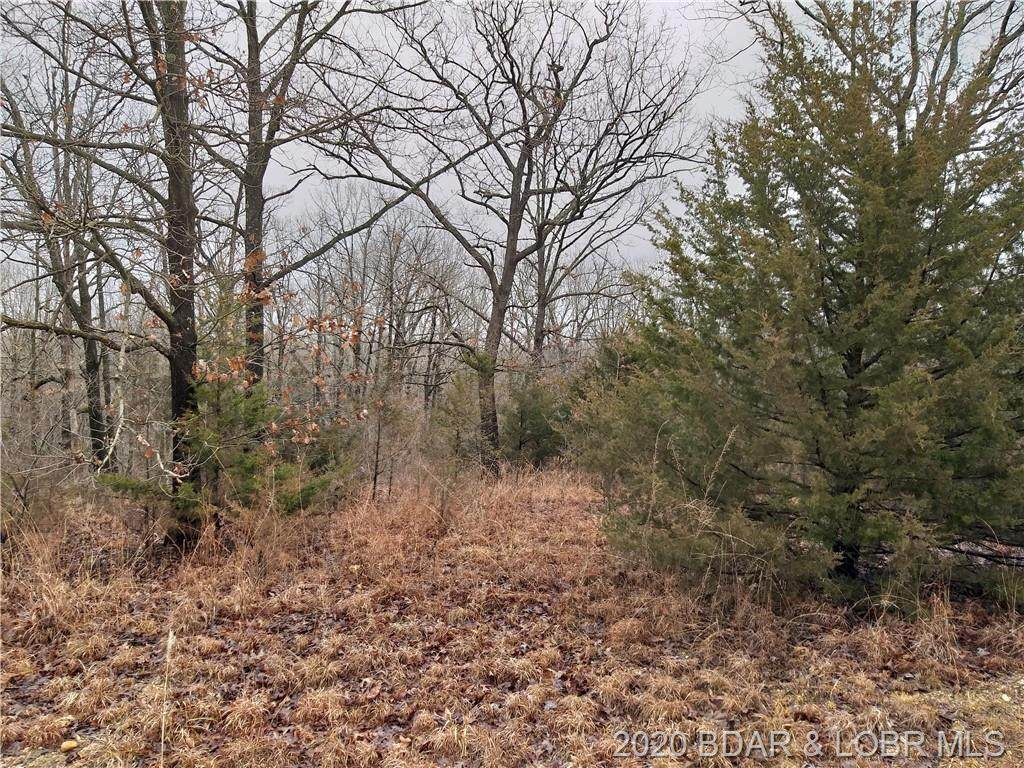 TBD Dry Hollow Road - Photo 1
