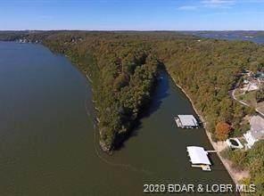 Port Niangua Lane, Camdenton, MO 65020 (MLS #3531082) :: Coldwell Banker Lake Country