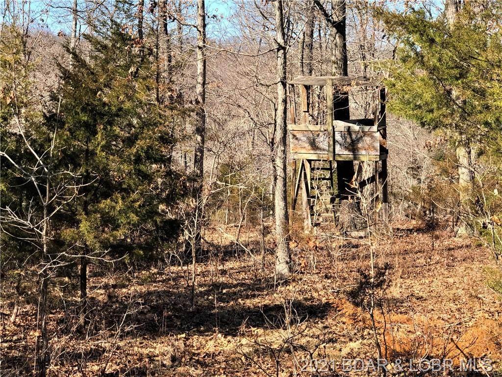 # 1 Calebs Trail - Photo 1