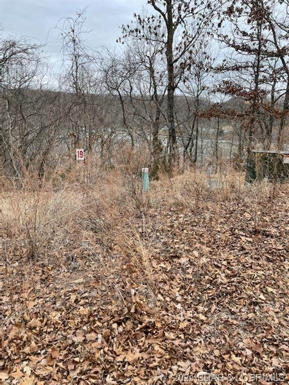 Lot 22 Tranquil Woods, Camdenton, MO 65020 (MLS #3532520) :: Coldwell Banker Lake Country