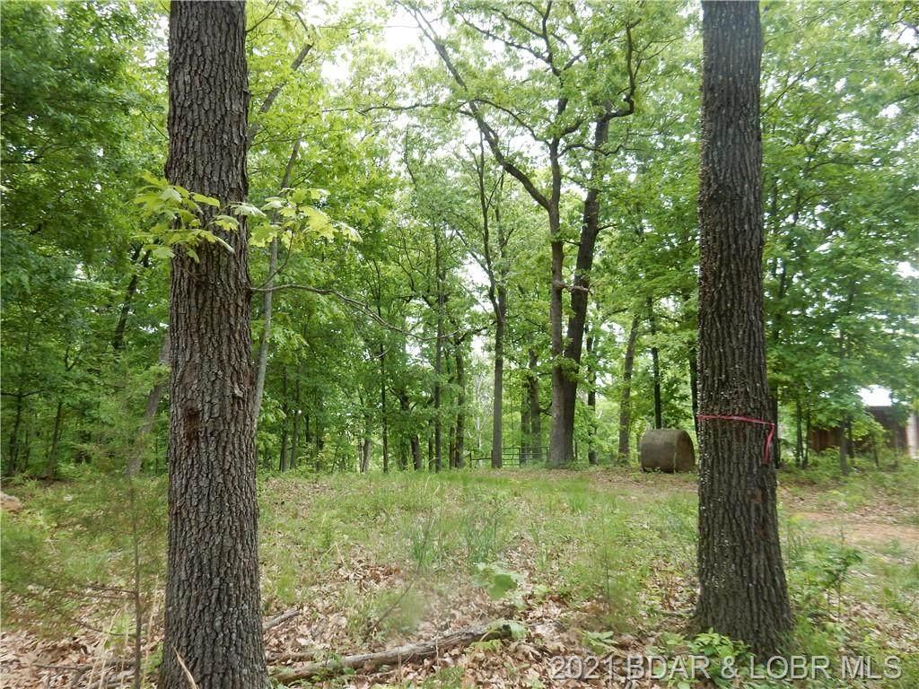 Elm Tree Lane - Photo 1