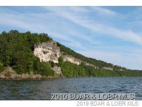 120 Groban Way, Osage Beach, MO 65065 (#3119809) :: Matt Smith Real Estate Group