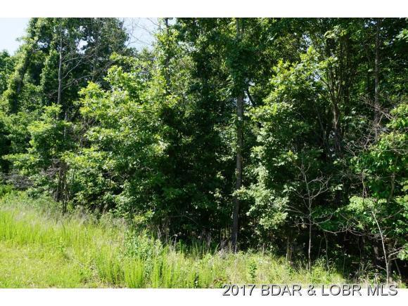 Lot 7 Columbine, Lake Ozark, MO 65049 (MLS #3124272) :: Coldwell Banker Lake Country