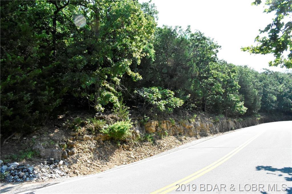 Lot 67 Regency Cove Drive - Photo 1