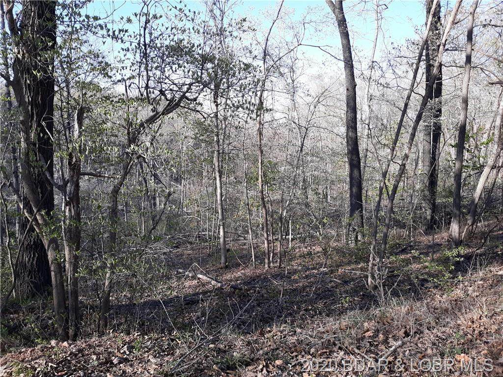 5 +/- Acres Broken Circle Road - Photo 1