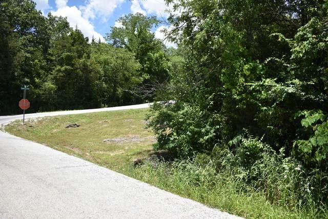 000 Lakeview Lane Lane, Eagle Rock, MO 65641 (MLS #202671) :: Davidson Group