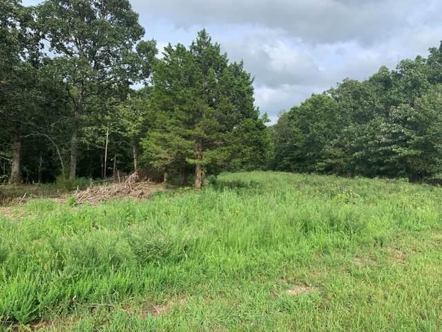 Lot 16 Horseshoe Estates, Joplin, MO 64804 (MLS #204000) :: Davidson Group