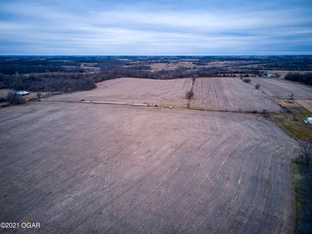 000 Farm Road 2060, Monett, MO 65708 (MLS #210619) :: Davidson Group