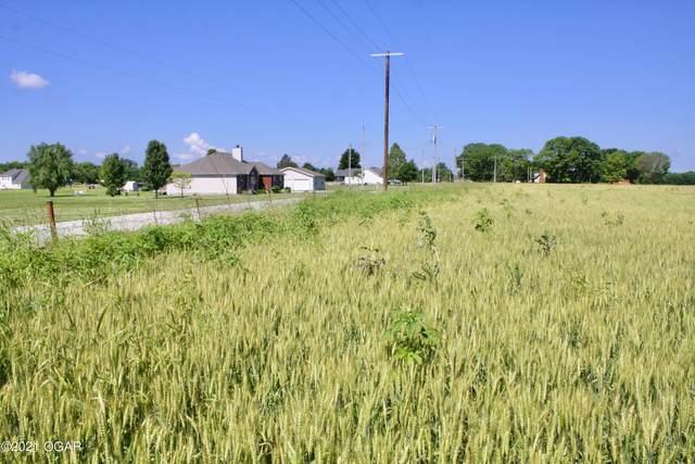 #3 Kafir Road, Oronogo, MO 64855 (MLS #213168) :: Davidson Group