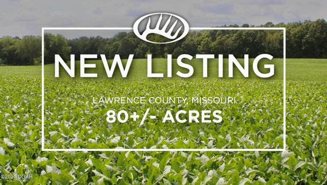 12 1020 Road, Sarcoxie, MO 64862 (MLS #214722) :: Davidson Group
