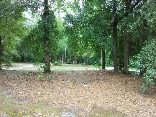 0000 Snake Swamp Road, Cope, SC 29038 (MLS #42957) :: Realty One Group Crest