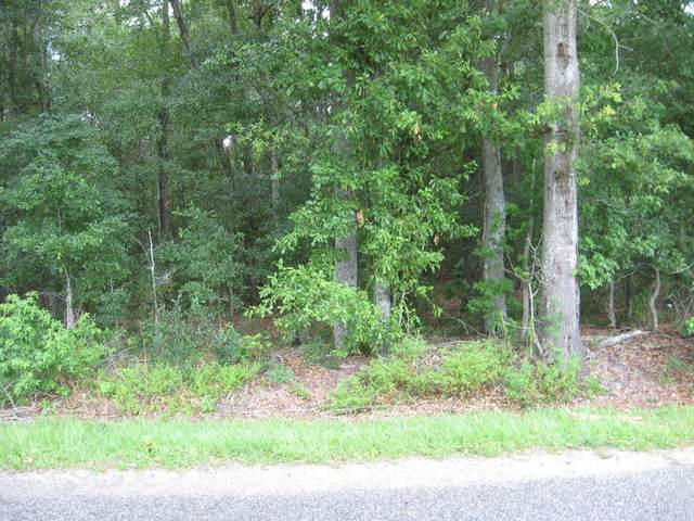 00 Hadwin, Bamberg, SC 29003 (MLS #43022) :: Realty One Group Crest