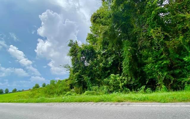 000 Tee Vee Road, Santee, SC 29142 (MLS #43129) :: Metro Realty Group