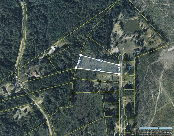 North Trail Rd, Orangeburg, SC 29118 (MLS #43174) :: Realty One Group Crest