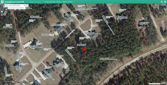1039 Berkeley Dr, Orangeburg, SC 29118 (MLS #43418) :: Metro Realty Group