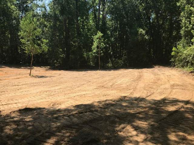 Foxfire Lane, Orangeburg, SC 29118 (MLS #42842) :: Realty One Group Crest