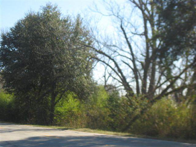 0 North Road, Orangeburg, SC 29115 (MLS #35835) :: Metro Realty Group