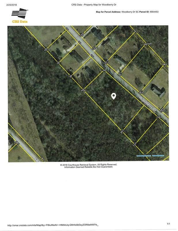 Woodberry, Orangeburg, SC 29115 (MLS #41042) :: Metro Realty Group