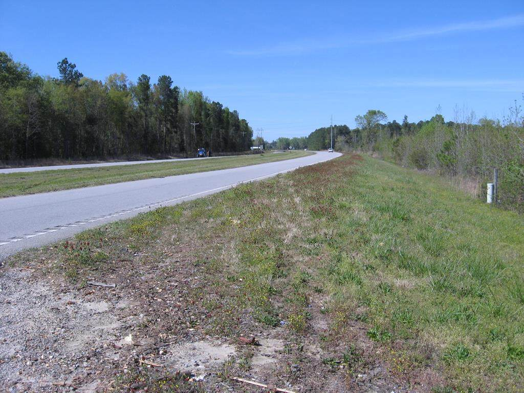 0 Rowesville Road( Hwy 21 South) - Photo 1