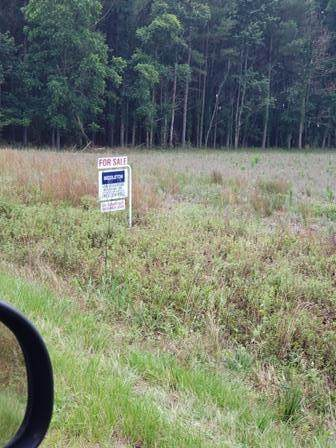 Elder Branch Road, Cordova, SC 29039 (MLS #42946) :: Realty One Group Crest
