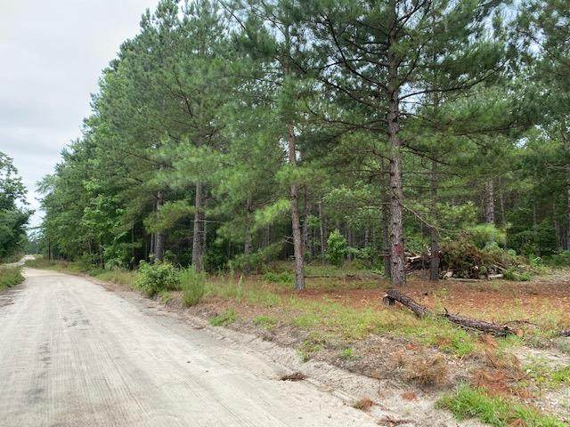 Thomas Drive, Bamberg, SC 29003 (MLS #42962) :: Realty One Group Crest