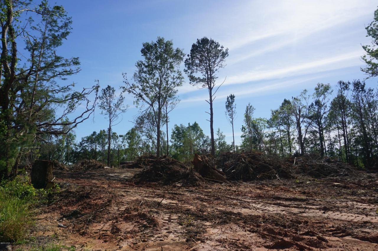 00 Hwy 90/Whiteville Road - Photo 1