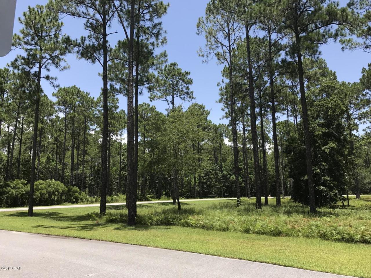 8556 Preservation Drive - Photo 1