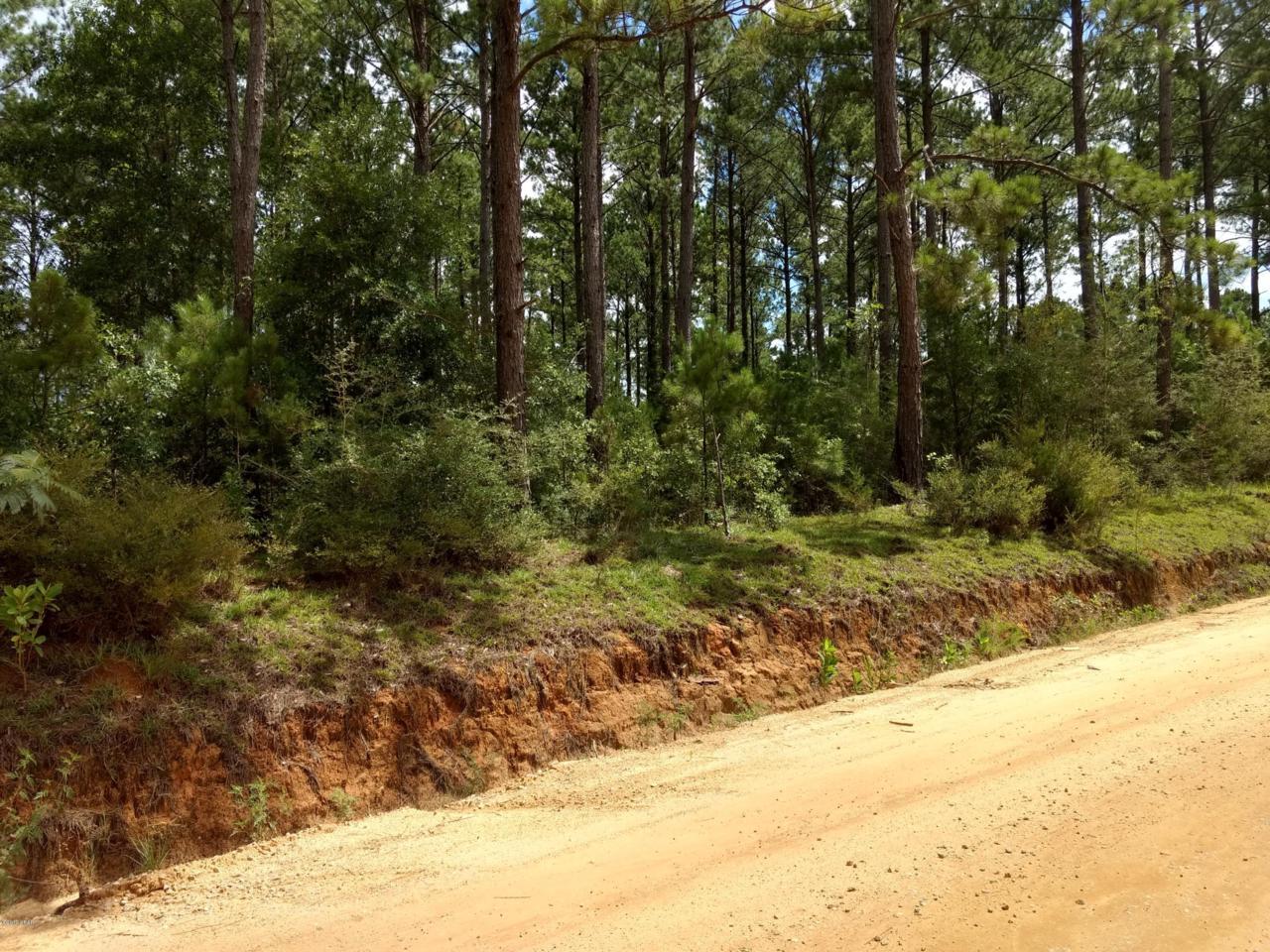 0 County Road 65 - Photo 1