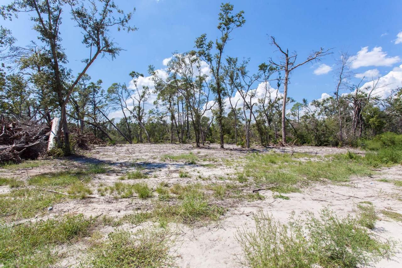 594 Hickory Bluff - Photo 1